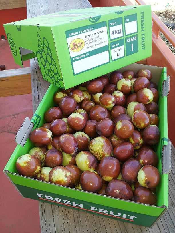 Box Li red dates