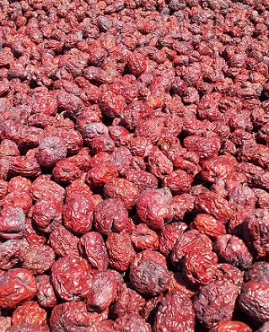 Dried Jujube