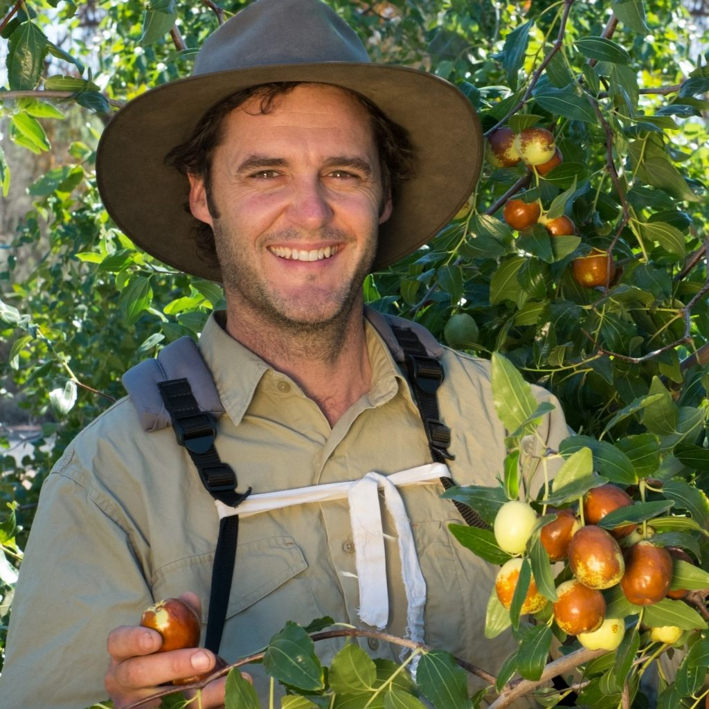 Bernard in Jujube Farm